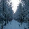 Природа / Город Северодвинск 1