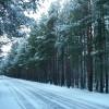 Природа / Город Северодвинск 1 Фотогалерея Северодвинск