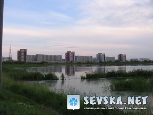 Северодвинск. Вид на квартала с берега котлована